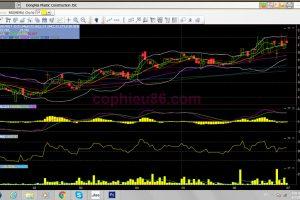 Phân tích cổ phiếu DNP: Năm thứ 4 liên tiếp DNP trả cổ tức bằng cổ phiếu