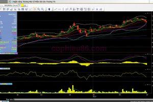 Phân tích cổ phiếu STB: Dự báo LNTT sẽ gần như bằng 0