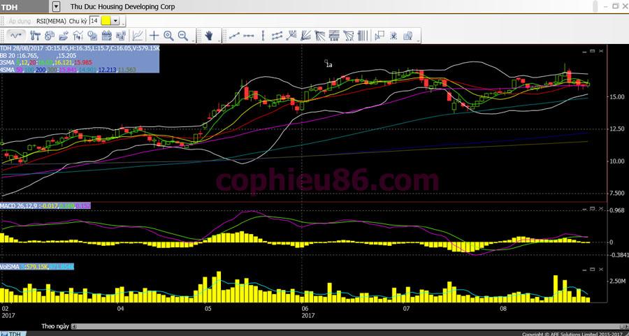 Phân tích cổ phiếu TDH: Ước tính giá trị hợp lý của TDH là 20.212đ/CP