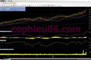 Phân tích, nhận định TTCK ngày 14/11: Điểm tăng, cổ phiếu phân hóa
