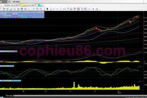 Nhận định thị trường ngày 01/02: Giằng co trong khoảng 1.100-1.120 điểm