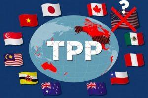 Lễ ký kết CPTPP: Không có Mỹ, Lợi ích của Việt Nam không như kỳ vọng