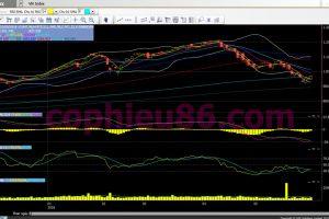 Phân tích, nhận định TT ngày 01/06: Phiên xác nhận thị trường tạo đáy
